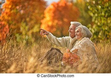 bonito, parque, par, middle-aged, outono, retrato