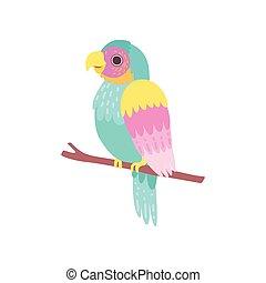 bonito, poleiro, papagaio, sentando, ilustração, tropicais, vetorial