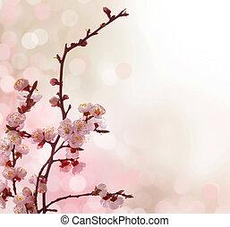 bonito, primavera, abstratos, borda