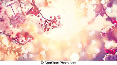 bonito, primavera, cena natureza, com, cor-de-rosa, florescer, árvore