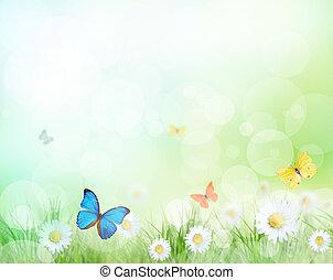 bonito, primavera, fundo
