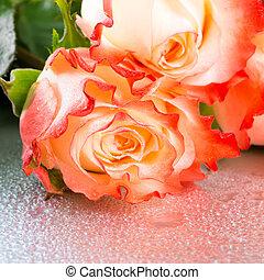 bonito, rosa, flores, ligado, luz, fundo, com, gotas, cima