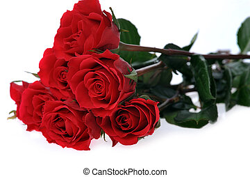 bonito, rosas, vermelho