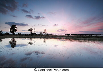 bonito, roxo, amanhecer, ligado, lago