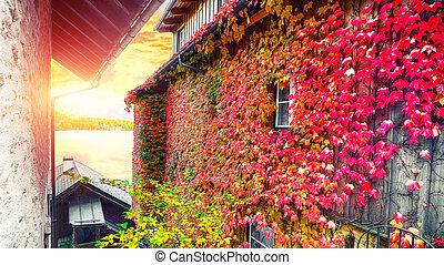 bonito, rua, em, hallstatt, vila, em, austríaco, alps., paisagem outono
