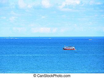 bonito, seascape, bote