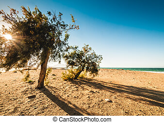 bonito, sicília, praia