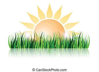 bonito, simples, sol, reflexão, desenho, capim