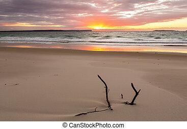 bonito, sobre, unspoilt, oceânicos, praia, amanhecer