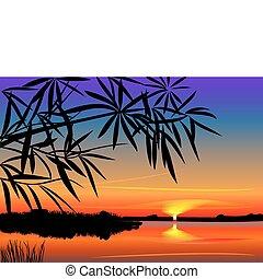 bonito, sobre, vetorial, pôr do sol, lago