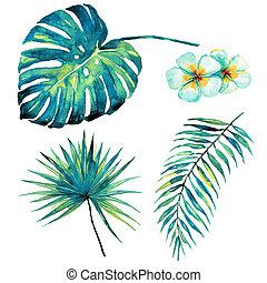 bonito, tropicais, folhas palma, e, flores, aquarela