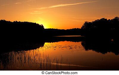 bonito, um, pôr do sol, ligado, madeira, lago