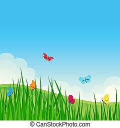 bonito, verão, meadow.