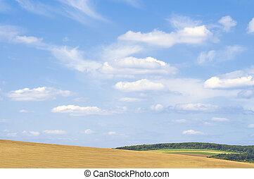 bonito, verão, paisagem