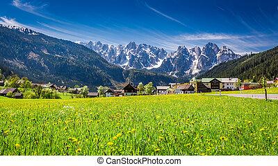 bonito, vila, gosau, em, alps austrian