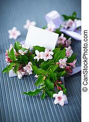 bonito, weigel, flores côr-de-rosa