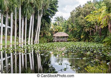 Bonnet House gardens, Ft Lauderdale, Florida - Bonnet House...