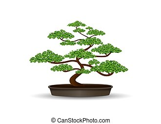 Clip art et illustrations de bonsai 3 113 dessins et - Dessin bonzai ...
