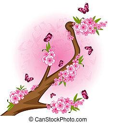 bonsai, motyle, kwiaty