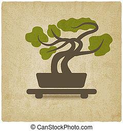 bonsai old background - vector illustration