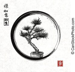 Bonsai pine tree hand drawn with ink