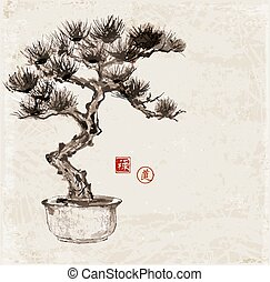 Bonsai pine tree hand hand-drawn with ink in traditional ...