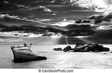 Black and White of a granite rock with small tree in Lake Tahoe, Nevada
