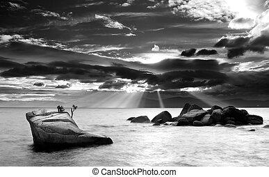 Bonsai Rock Lake Tahoe - Black and White of a granite rock...