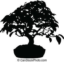 Bonsai silhouette - vector