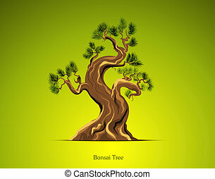 Bonsai Tree Background