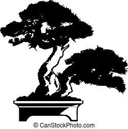 Bonsai tree. Black silhouette of bonsai. Vector illustration