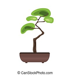 Bonsai tree in a pot. Japanese art of growing miniature trees. Vector illustration, isolated on white.