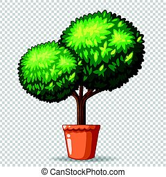 Bonsai tree in clay pot illustration