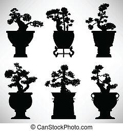 Bonsai Tree Plant Flower Pot - A set of bonsai tree in...