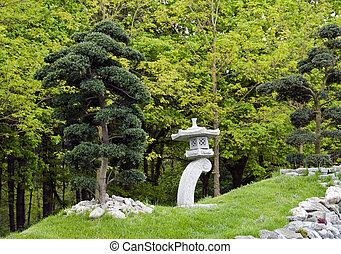 bonsai trees in japanese garden