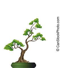 bonsai, vektor, baum