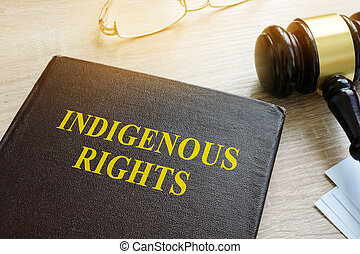 Book about Indigenous Rights law and gavel.