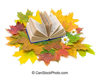 book and autumn leaves on a white background. Top view.