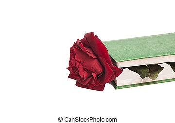 book and red rose isolated on white