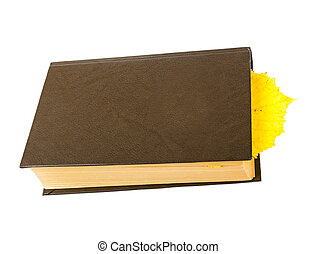 book bookmark yellow leaf isolated on white background