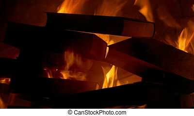 Book Burning - Censorship Concept 1 - Books burn in fire,...