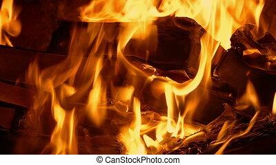Book Burning - Censorship Concept 2 - Books burn in fire,...
