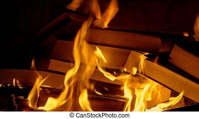 Book Burning - Censorship Concept 3 - Books burn in fire,...
