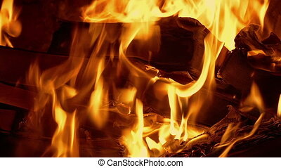 Book Burning - Censorship Concept - Books burn in fire,...