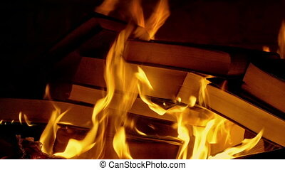 Book Burning - Censorship Concept - Books burn in fire,...