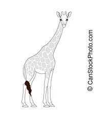 book:, coloration, girafe