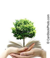 Book in thr hands