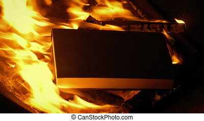 Book Is Thrown Into Fire - Someone throws a book into the...