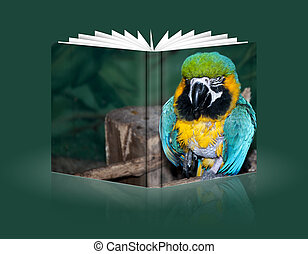 book of a colorful parrot