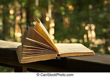Book of poetry - Romantic evening in the country...